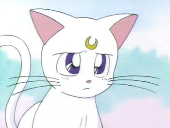 sailor moon artemis cat  Anime